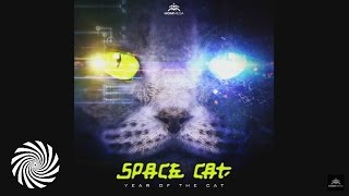 Space Cat - Loops of Insanity