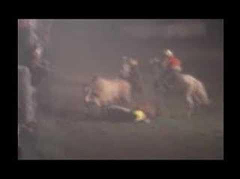 coleo de toros 14