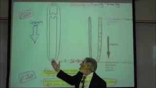 BARORECEPTOR REFLEX, GRAVITY & POSTURAL HYPOTENSION by Professor Fink