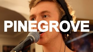 Pinegrove -