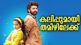 തമിഴിലും ആൻ മരിയ കലിപ്പിലാണ്|Ann Maria Kalippilanu remaking in Tamil!