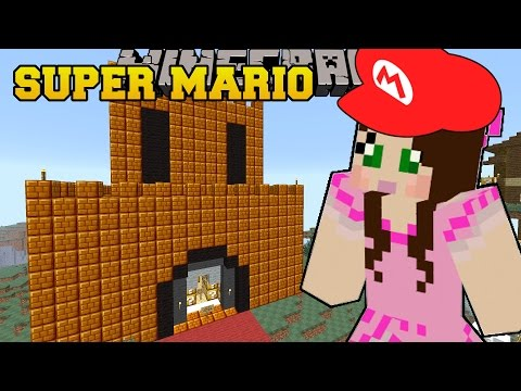 Minecraft THE PRINCESS IS SAVED SUPER MARIO BROS Custom Map 8
