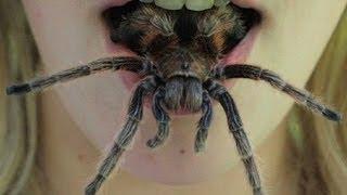 Top 10 Common Phobias