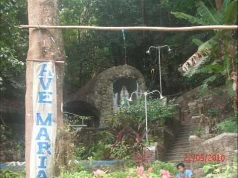 Mama Mary s Nature s Basilica FISVKK CMHT .wmv