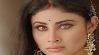 Naagin 3rd February 2016 - Ritik Catches Shivanya Killing Sailesh