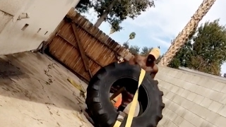 Omarion Flips Tire's for a Workout