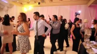 Persian Wedding Entertainment - Line Dance + Beraghsa