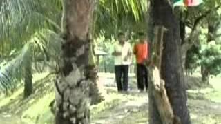 Diabari Harirampur : Vober Hat 53