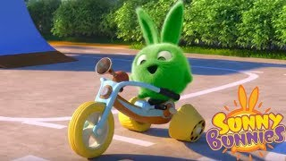 Cartoons for Children | Sunny Bunnies - HOPPER