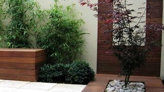 taman kering minimalis dalam rumah, Taman Minimalis Dalam Rumah