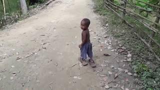 দেখুন বাচ্চাদের অস্থির মজার ফানি ভিডিও || Amazing funny video