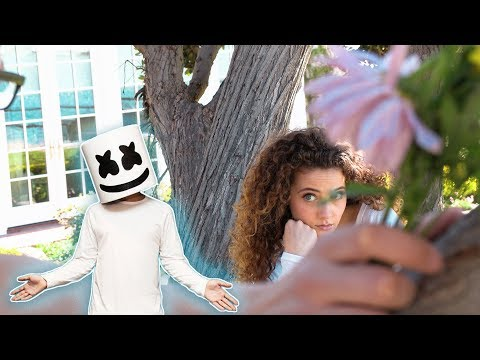 Marshmello & Anne Marie FRIENDS Music Video by Sofie Dossi
