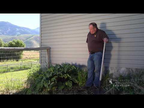 jim's gardening canberra