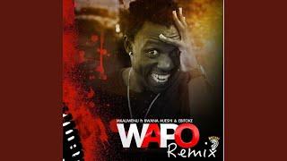 Wapo (feat. Bwana Mjeshi, Ebitoke) (Remix)