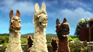 The llamas join Shaun the sheep on the farm - The Farmer
