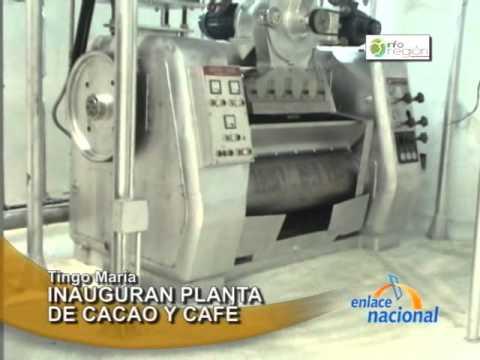 Tingo María Cooperativa Naranjillo inaugura planta industrial de cacao y café