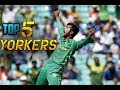 Download Video Download Perfect Yorkers From Muhammad Amir - Top 5 - Cricket We Love You 3GP MP4 FLV
