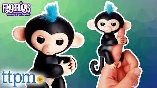 Fingerlings Baby Monkey from WowWee