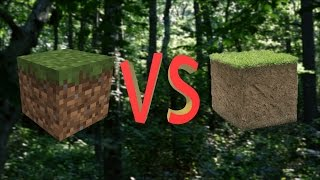 Minecraft vs Real Life
