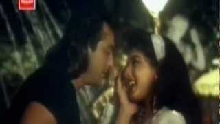 Chaha Hai Tumhein Chahenge [Full Video Song] (HD) With Lyrics - Jeena Marna Tere Sang