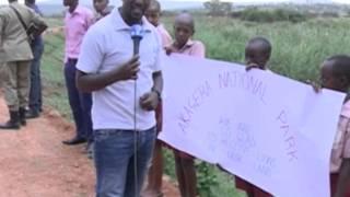 Intare zagarutse mu Rwanda