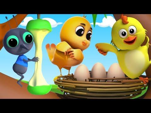 animales sonido canción | educativas canciones | aprender animales sonidos | Animals Sounds Song