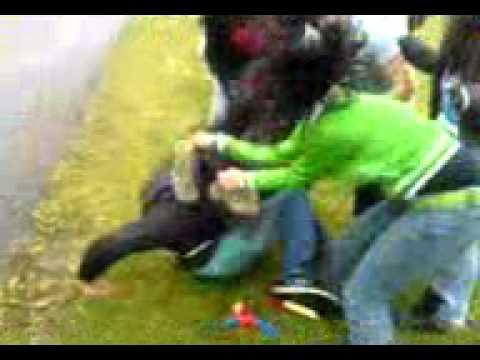 Girls fight.3gp
