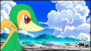 ~Snivy Minccino and Emolga Amv~ All About Us