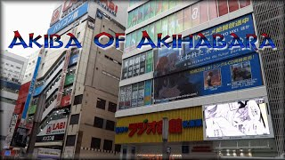 Akiba Of Akihabara ★Japan Vlog 19★