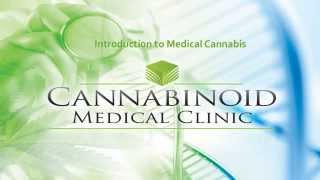 Cannabinoid Medical Clinic - Introduction to your first visit