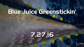 Blue Juice Greenstick Bigeye 7.27.16