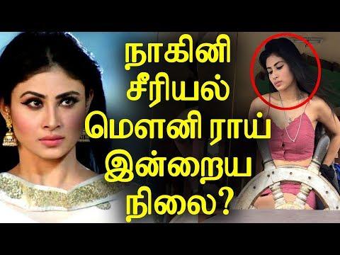 Xxx Mp4 Did You Know Nagini Serial Mouni Roy Current Status நாகினி சீரியல் மௌனி ராய் இன்றைய நிலை 3gp Sex