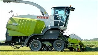 Claas Jaguar 960 Terra Trac | Bunker forage harvester - Lucerne Harvest - Hartog Abbekerk