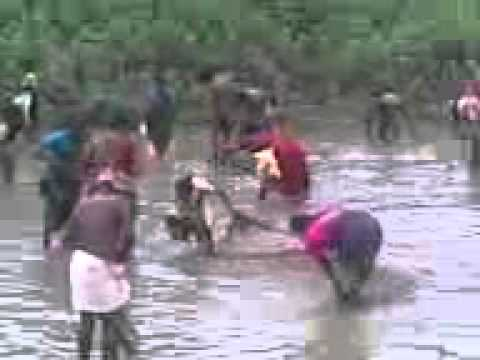 This is locale village people fish hunting tamil nadu india.