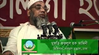 Boruna Hefazothe Islam Waz - Mufti Fozlul Haq Amini