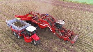 Potato Harvesting   Grimme Ventor 4150 & Vervaet Hydro Trike xl   Ploegmakers Rips