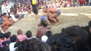 amazing wrestling ( real dangal).