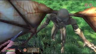 5: Oblivion: Knights Of The Nine Quest: Pilgrimage: Part 3: Finding Wayshrines