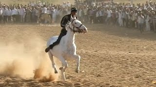 घोड़े की दौड़ Rajasthan Raniwara horse ki race 2017