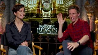 The cast of  Fantastic Beasts and Where to Find Them talks with Harkins Behind the Screens