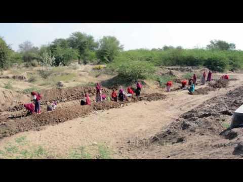 Hard Working Women of Indian Rajasthani Village.Junjani,Bhinmal,Rajasthan,India.भीनमाल.Marwari Woman