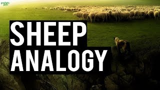 THE ANALOGY OF THE SHEEP (BEAUTIFUL)