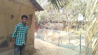 Nidanpur, funny video