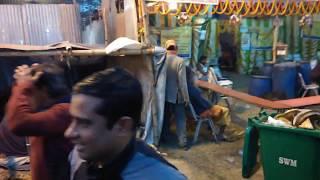 Festivals of India : Nude Sadhus @ Gangasagar Mela Camp