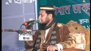 Pirjada Shafiqul Islam | Waz | mrittur Jontrona | (part-2)