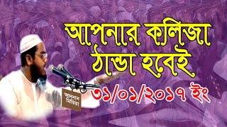 Mawlana Hafizur Rahman Siddik (Kuyakata) 21/01/2017