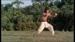 Jackie Chan - Training of the Drunken Master