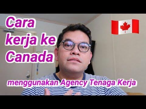 TKI Canada : Cara Kerja ke Canada melalui Agency Tenaga Kerja