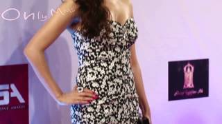 H0T Monica Bedi Strapless Dress At Colors Style Awards