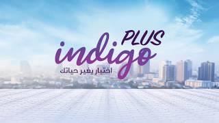 انديجو بلس أول نظام اتصالات متكامل في مصر